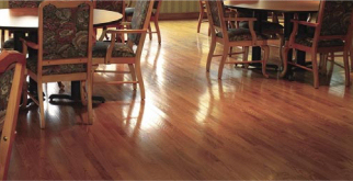 Microfiber Floor Cleaner on hard wood floors