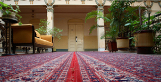 How to get rid of carpet odors